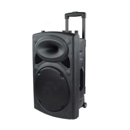 Boxă profesională AlphaOne P12 cadou un microfon wireless